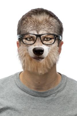JPatz_20141225_3J8A5922-wolf_Web