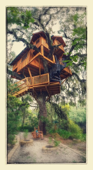 Approaching the treehouse. Sidenote: Google photos added all the picture effects when it backed up to the cloud. A little cheesy but I still like it.