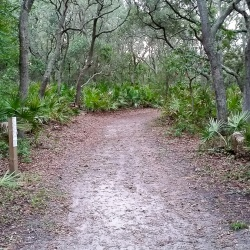Start of Blackrock Beach trail